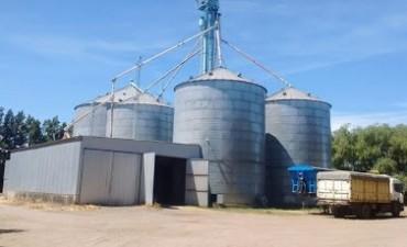 Clausuraron una aceitera y una cerealera en el este de Córdoba
