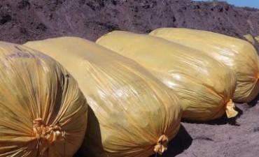 Leones y un novedoso sistema de embolsado de los residuos sólidos urbanos