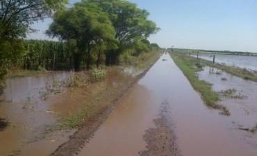 Mal estado de los caminos rurales complica seriamente el transporte de la cosecha gruesa