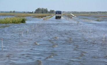 Inundaciones: camiones salen de los campos con 30% menos de carga