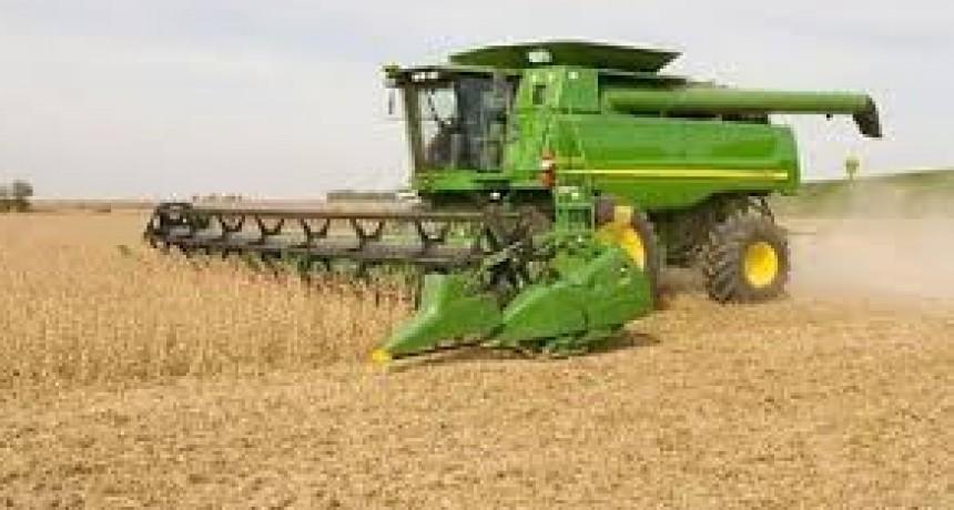 Muere trabajador rural tragado por una cosechadora.