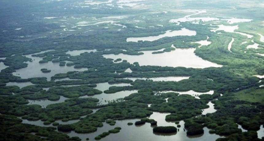 """Proponen crear la """"Reserva Nacional Humedales Delta del Paraná"""""""