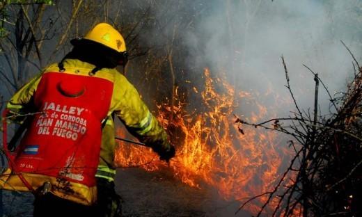 El 70% de la zona ganadera forestal cordobesa, con riesgo de incendio