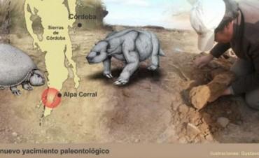 Hallaron restos de gliptodontes y perezosos en Córdoba