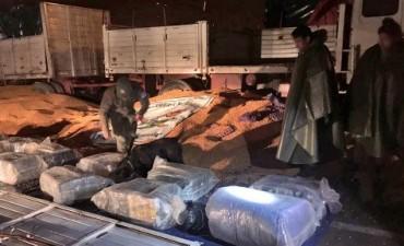 Descubren más de 260 kilos de hojas de coca en Las Mojarras