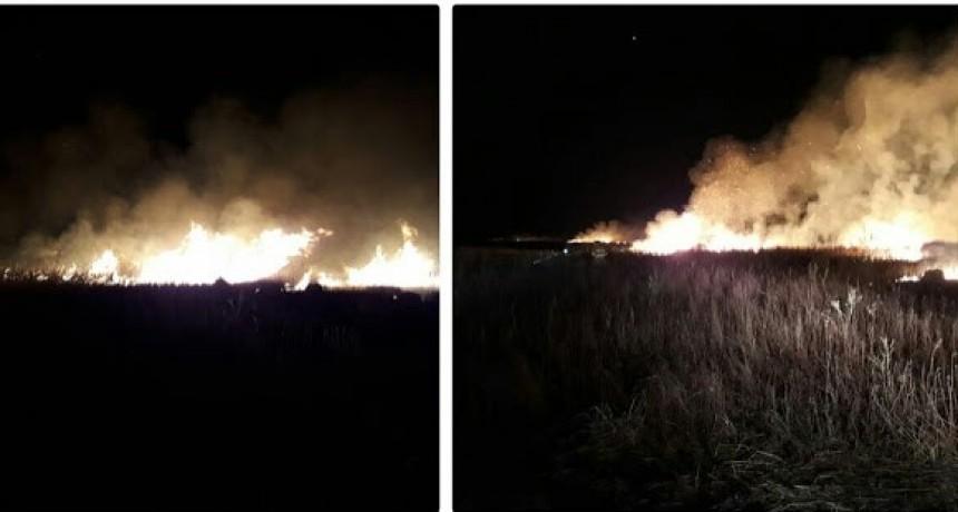Incendio de pastizales en zona rural de Wenceslao Escalante